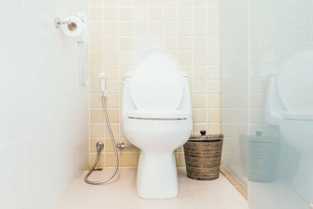 Toilelts